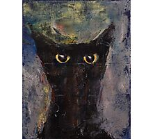 Ninja Cat Photographic Print
