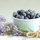 ....lavender and blueberries by Jane Anastasia Studio