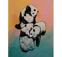 Panda Street Fight Photographic Print