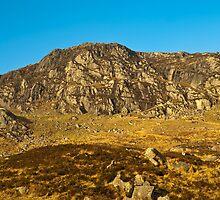 Landscape, Craigdews Hill, Galloway Forest park, Scotland by Hugh McKean