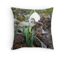 a single snowdrop among dead leaves Throw Pillow