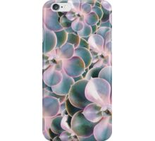 CACTUS AGAINST THE WORLD iPhone Case/Skin