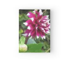 Purple Dahlia V Hardcover Journal