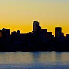 Seattle Skyline by John Butler