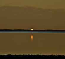 Everglades Sunrise by morgan earl