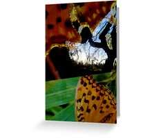 Butterflying Greeting Card