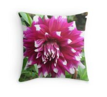 Purple Dahlia IV Throw Pillow