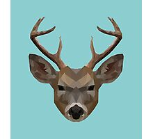 The Stag Photographic Print