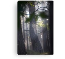 Katie Melua - Spiders Web .  by The Saint.  Featured in Canon…Favorites: 1 Views: 154 . Thx! Canvas Print