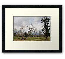 Arcadia scene Framed Print