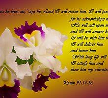 Psalm 91 by Deborah McLain