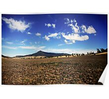 Patch of Dirt Poster