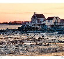 Winter Morning Shacks by Richard Bean