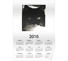 2016 Yearly Calendar - Tuxedo Cat Poster