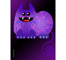 PAISLEY CAT  (card) Photographic Print