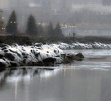 Icy Lakeshore by Ljartdesigns