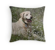 Blonde Labrador in wildflowers. Throw Pillow