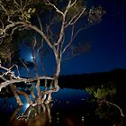 Mangroves at full moon by Clayton Hairs