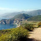 Pacific Coast Highway by Daniel Silva