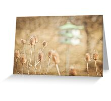 The textures of spring Greeting Card
