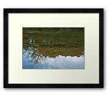 Underwater Landscape Framed Print