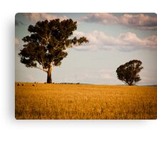 Parkes Countryside Canvas Print