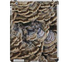 Valley Shelving iPad Case/Skin