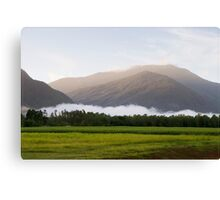 Dawn @ Gordonvale FNQ Canvas Print