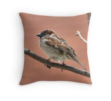 Perched n' Pretty Throw Pillow