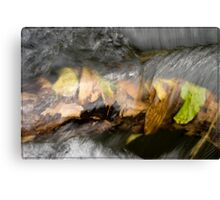 Ross and Locke water 3 Canvas Print