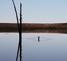 Mirrored Reflections by Michelle Munday