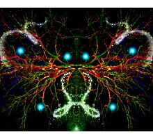 Beating of the Alien Heart Photographic Print