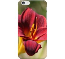 Large Lily iPhone Case/Skin