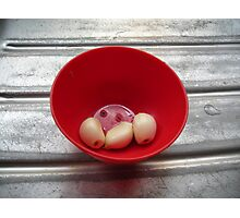 Garlic - Joan Photographic Print