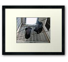 Socks - Ma Liani Framed Print