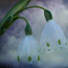 Snow Bells by Regenia Brabham