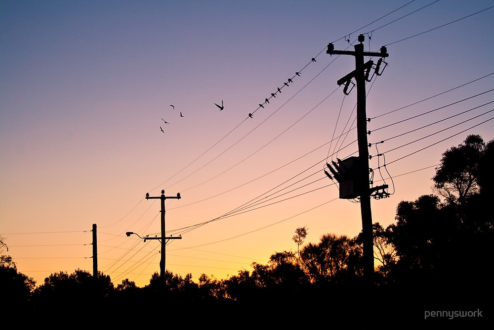 Birds on a Wire by pennyswork