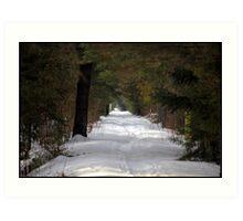 Nature Trail in Mid Winter Art Print