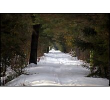 Nature Trail in Mid Winter Photographic Print