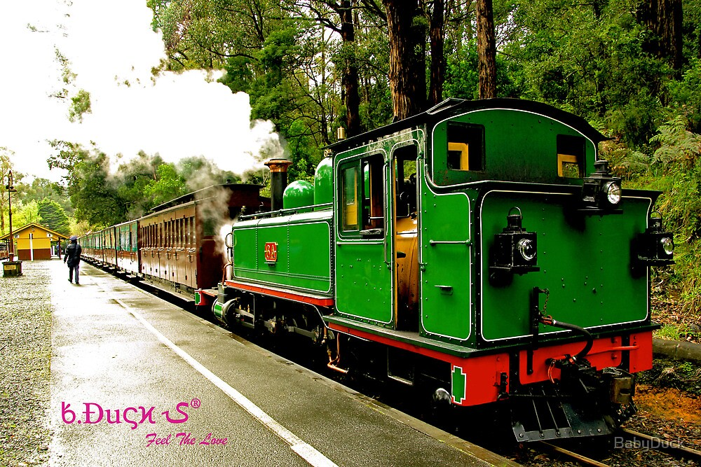 "The ""true"" Puffing Billy by BabyDuck"