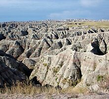 The Badlands by debidabble