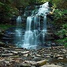 Ganoga Falls As Summer Arrives by Gene Walls