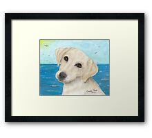 Yellow Labrador Lab Dog Beach Cathy Peek Framed Print