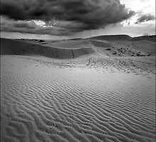 Sand Dunes of Mui Ne by Karl Willson