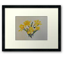 Daffodils           106 Framed Print