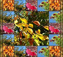 Reflections of Autumn Collage by kathrynsgallery