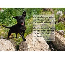 Black Chihuahua dog. Photographic Print