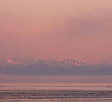 Coastal Mountains in the mist of a February Dawn  by TerrillWelch
