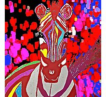 I Dreamed About A Red Zebra Photographic Print
