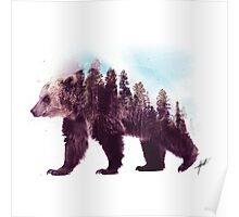 Forest Bear Poster